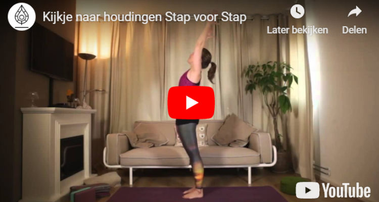 Yoga Stap voor Stap Happy with Yoga Review